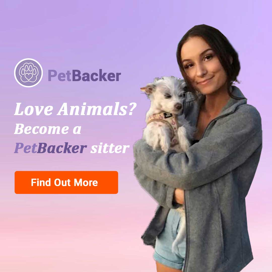 PetBacker – for Pet Lovers – Become a sitter