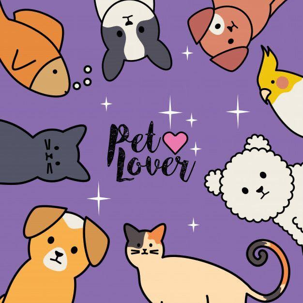 Petbacker.com – Find your pet sitter/ dogwalker / groomer / pet taxi / pet boarding here